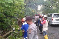 Pohon Tumbang Timpa 3 Motor di Jalan Wonosari - Yogyakarta, akibat Hujan dan Angin Kencang