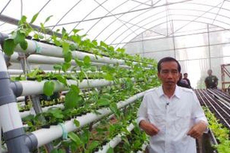 Jokowi di rumah hidroponik Rusun Marunda, Senin (10/3/2014).