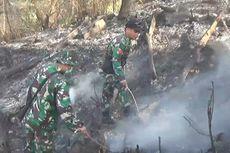 Petugas Gunakan Sepatu dan Kayu Padamkan Kebakaran Lahan di Toraja