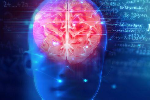 Ternyata, Huruf Punya Efek yang Luar Biasa bagi Otak