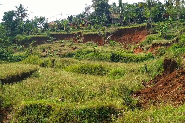 Lahan persawahan ambles dan tanahnya terus bergerak di Kampung Caringin, Desa Mekarsari, Kecamatan Nyalindung, Sukabumi, Jawa Barat, Kamis (23/7/2020).