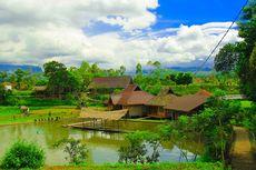 Aktivitas Wisata di Desa Wisata Saung Ciburial, Ada Matador Domba