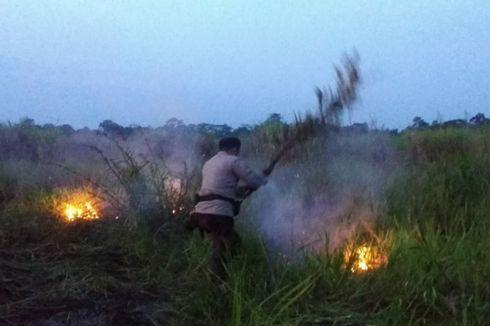 Kondisi di Muaro Jambi, Kebakaran Lahan Gambut Mulai Terjadi Jelang Musim Panas