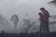 Karhutla di Riau Meluas, Tim Pemadam Berjibaku dengan Api Siang dan Malam