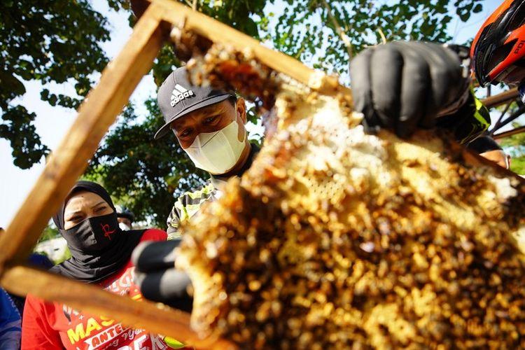 Wali Kota Madiun Maidi bersama Wakil Walikota Madiun, Inda Raya dan puluhan guru melihat langsung produksi lebah madu milik Sunardi di Desa Banjarsari Wetan, Kecamatan Dagangan, Kabupaten Madiun, Jumat (21/05/2021)