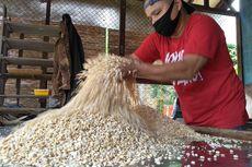 Dorong Produksi Dalam Negeri, DPR Usul Importir Kedelai Bina Petani Lokal