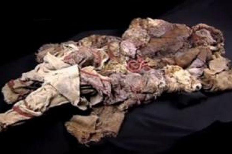 Keju tertua di dunia ditemukan di dada sebuah mumi.