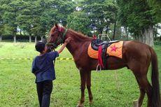 Wisata Selorejo Malang, Camping hingga Belajar Berkuda