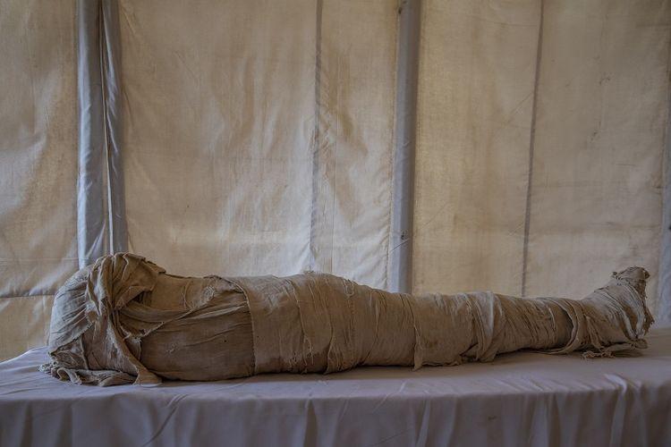 Mumi kuno dipamerkan oleh arkeolog terkemuka Mesir Zahi Hawass dan timnya di sebuah permakaman luas yang dipenuhi dengan lubang penguburan, peti mati, dan mumi yang berasal dari Kerajaan Baru 3000 SM, Minggu, 17 Januari, 2021, di Saqqara, selatan Kairo, Mesir.