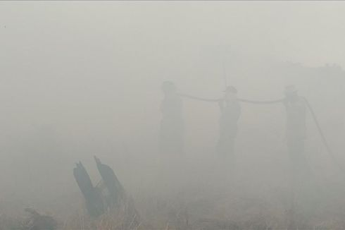 Kebakaran Lahan di Riau Makin Meluas, Kabut Asap Makin Tebal