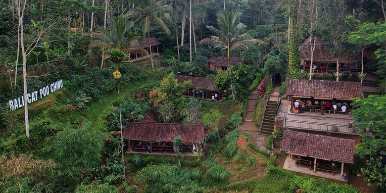 Satria Agrowisata di Jalan Raya Kintamani, Tampaksiring, Kabupaten Gianyar, Bali, Kamis (6/9/2018). Di sini wisatawan dapat menemukan tempat ngopi sekaligus belajar seluk beluk kopi.