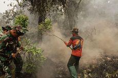 Kabut Asap Riau, 3 PR Jokowi untuk Tangani Karhutla di Indonesia
