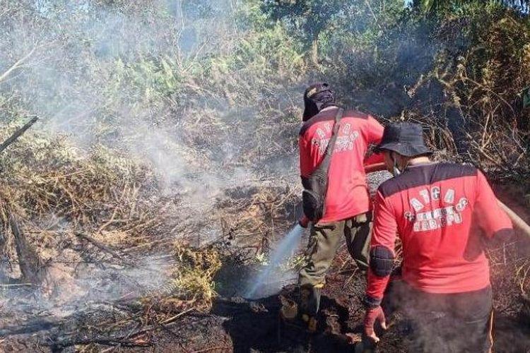 Petugas berusaha memadamkan kebakaran lahan di wilayah Kabupaten Penajam Paser Utara.