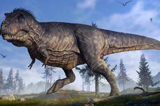 Pertama Kali, Ahli Temukan Bayi Dinosaurus T-Rex