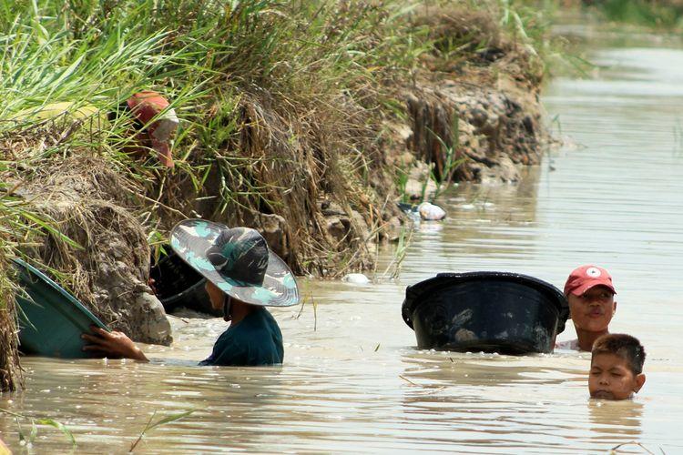 Warga melimbang tanah lumpur di kanal PT Samora Jaya Usaha, Desa Pelimbangan, Kecamatan Cengal, Kabupaten Ogan Komering Ilir (OKI), Sumatera Selatan, untuk mencari harta karun yang diduga peninggalan masa kerajaan Sriwijaya.