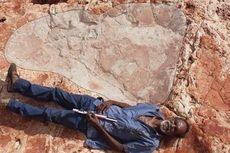 Fosil Jejak Kaki Dinosaurus Terbesar Ditemukan di Australia