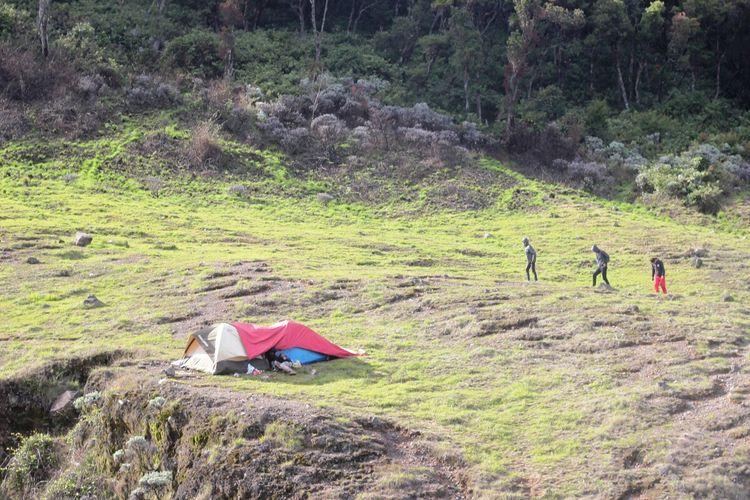 Alun-alun Suryakancana Taman Nasional Gunung Gede Pangrango (TNGGP) Jawa Barat