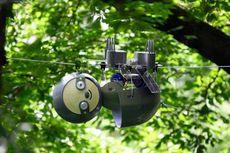 Selamatkan Spesies Langka, Ilmuwan Ciptakan Robot Kungkang