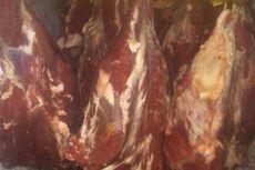 Harga Daging Sapi Hanya Turun Sedikit, Pemerintah Akan Impor Lagi