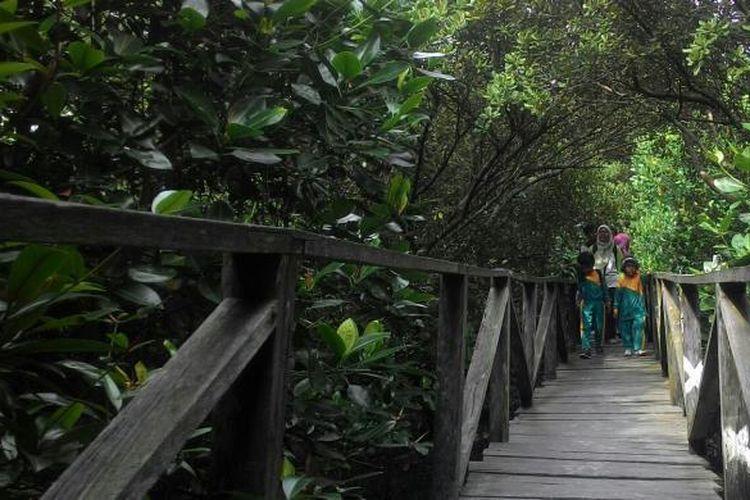 Kawasan lindung mangrove Margomulyo merupakan salah satu lokasi wisata warga Balikpapan, Kalimantan Timur. Di sana, masih bisa ditemukan keriuhan puluhan monyet hidung belanda atau bekantan di waktu-waktu tertentu.
