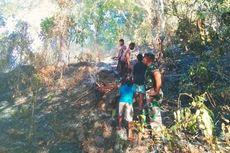 3 Hektare Lahan Hutan Lindung Ilinmedo di Sikka NTT Terbakar