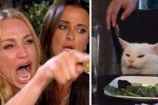Kisah Pilu di Balik Meme Lucu Wanita dan Kucing