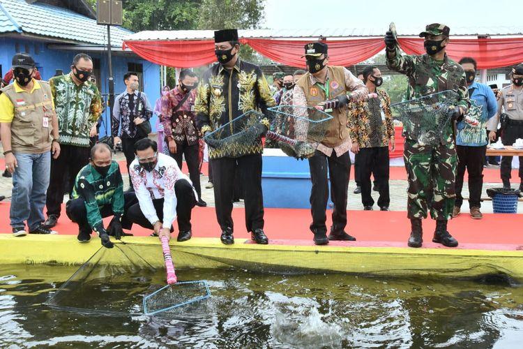 Gubernur Kalsel Sahbirin Noor, saat memanen ikan nila, di sela-sela kunjungannya ke Kampung Tangguh Banua, di Kampung Iwak Kelurahan Mentaos Banjarbaru, Jumat (24/7/2020).