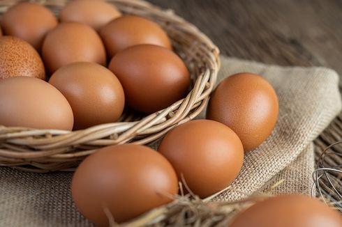 Anjloknya Harga Telur Ayam Jadi Penyebab Deflasi September 2021