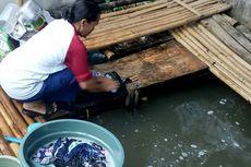 Mandi dengan Rembesan Air Kali Cisalak, Warga di Tangsel Terkena Penyakit Kulit