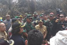 Menteri LHK Sebut Karhutla di Taman Nasional Tesso Nilo Sudah Parah