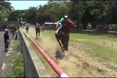 Pordasi Gelar Kejuaraan Nasional Pacuan Kuda di Yogyakarta
