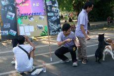 Kendalikan Wabah Rabies di Bali Tak Perlu Eliminasi Anjing