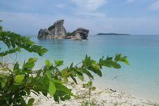 Sinergi Pariwisata, Ratusan Anakan Cumi Dilepas di Laut Bangka