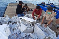 KKP Didesak Menghentikan Ekspor Benih Lobster, Ini Sebabnya