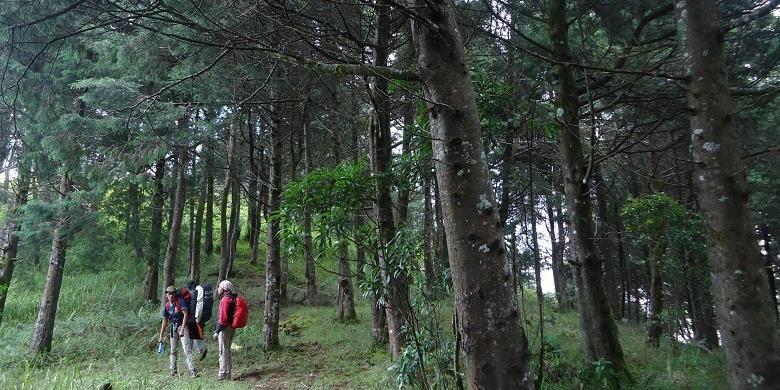 Jalur Pendakian Gunung Prau via Dusun Wates, Kecamatan Kalijajar, Kabupaten Temanggung, Jawa Tengah.