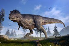 Dua Spesies Dinosaurus Baru Ditemukan di China, seperti Apa Persisnya?