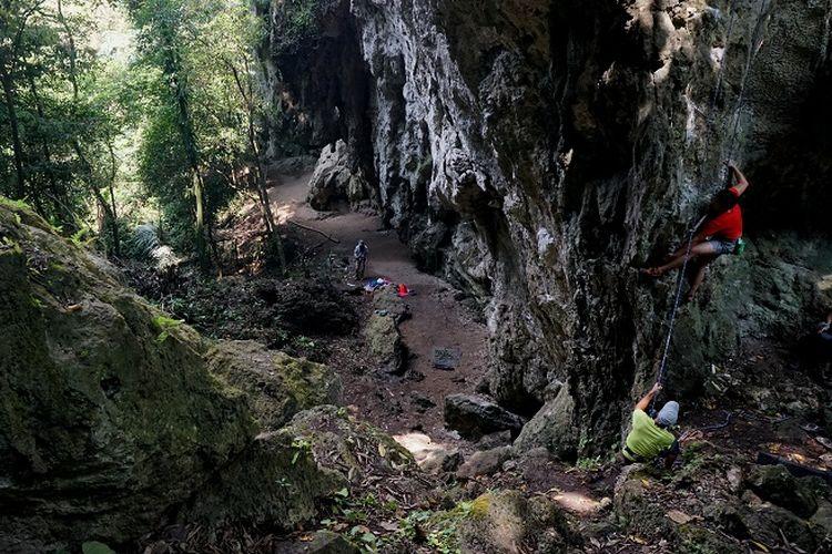 Pemanjat sedang memanjat jalur Tuan Senja (tingkat kesulitan 5.9+) Tebing Kuta Lingkung, Klapa Nunggal, Jawa Barat (13/6/2020). Tebing Kuta Lingkung merupakan tebing kapur yang berada di area Karst Klapa Nunggal dan memiliki potensi wisata minat khusus.