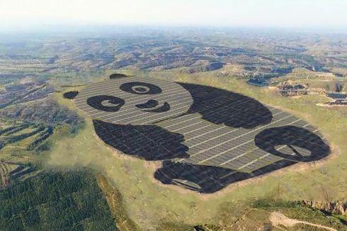 China Bangun 250 Ha Tenaga Surya Serupa Panda Raksasa