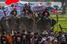Ratusan Pawang Gajah Thailand Gelar Unjuk Rasa