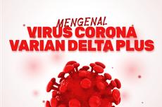 INFOGRAFIK: Mengenal Virus Corona Varian Delta Plus