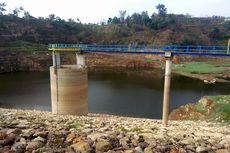 Belasan Hektar Lahan Waduk Gonggang Kritis, DAS Solo Bagi 16.000 Bibit Buah