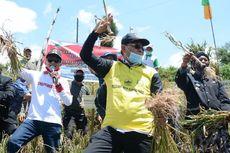 Targetkan Swasembada, Kementan Puji Produksi Bawang Putih di Batang