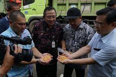 Langka Pakan Ternak, Kementan Distribusikan Jagung ke Peternak Rakyat