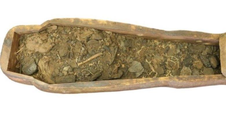 Isi peti mumi di Museum Nicholson, Universitas Sydney, Australia. (Museum Nicholson via BBC)