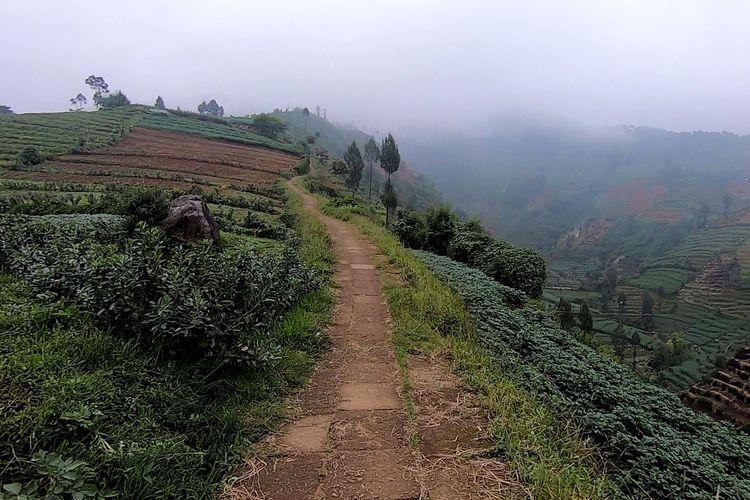 Rute awal pendakian Gunung Prau via Igirmranak.