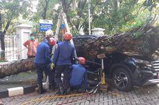 Pohon Tumbang Timpa Mobil di Kantor BPKP Matraman
