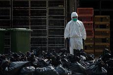 China Konfirmasi Korban Meninggal Dunia H7N9