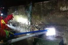Ular Kobra Menyelinap di Sela Tembok Rumah Warga Cibubur, Damkar Turun Tangan