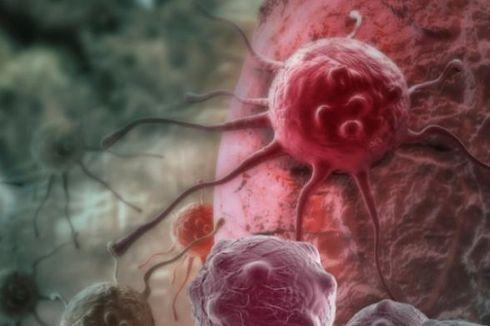 Mampukah Imunoterapi Mengalahkan Kanker?