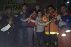 Petugas Damkar 3 Jam Berburu Ular Sanca yang Resahkan Warga